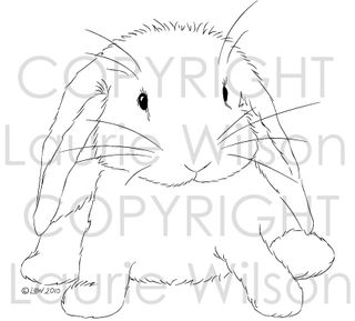 BunnywabbitBLOGpic