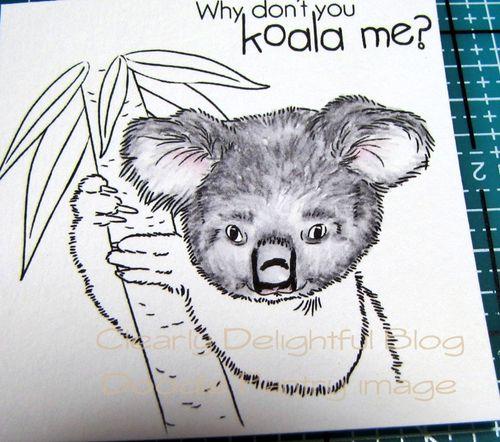 KoalaTut11