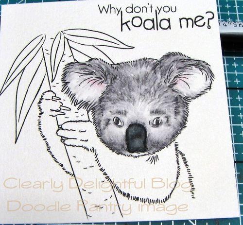 KoalaTut12