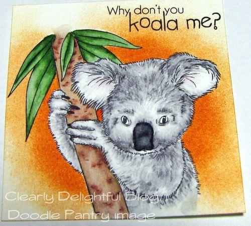 KoalaTut20