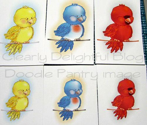 BirdieWireColor-sizecompare