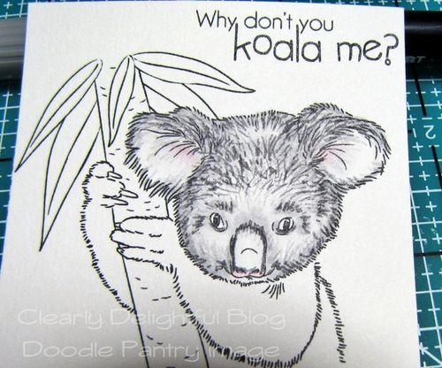 KoalaTut08