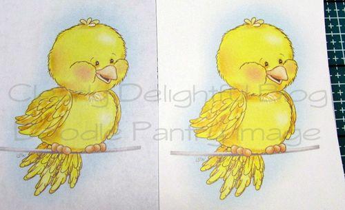 BirdieWireColor-papercompare